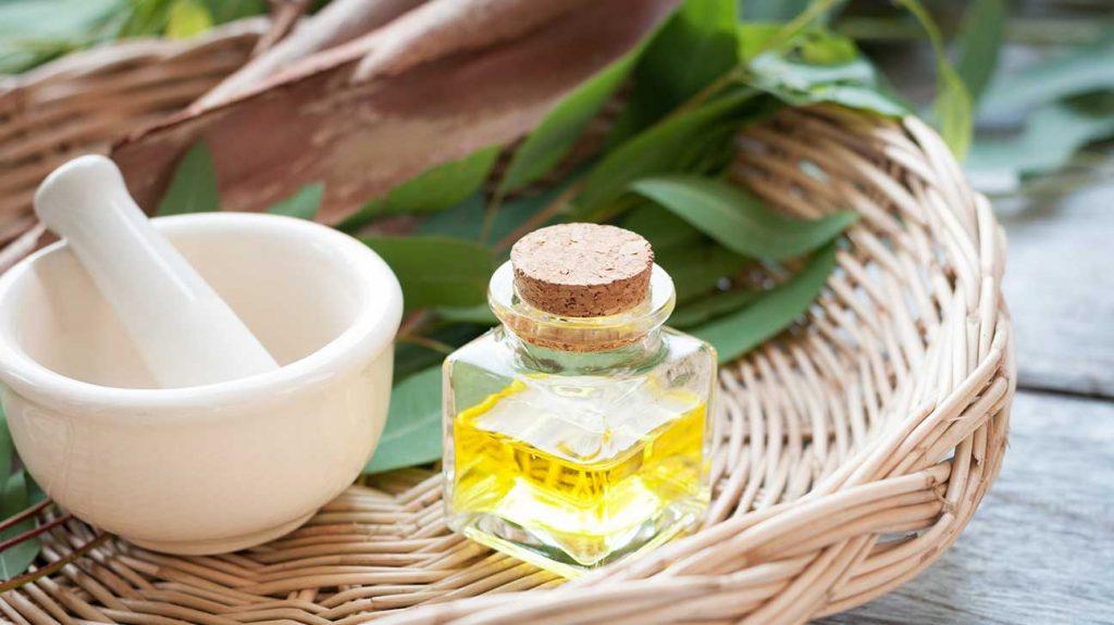 Eucalyptus-oil-as-essential-oils-for-headaches