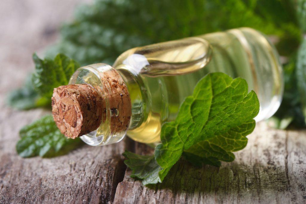 Melissa-oil-as-essential-oils-for-headaches