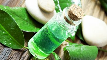 tea-tree-oil-for-hair