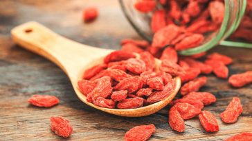 Goji-berry-plant-for-a-healthy-brain