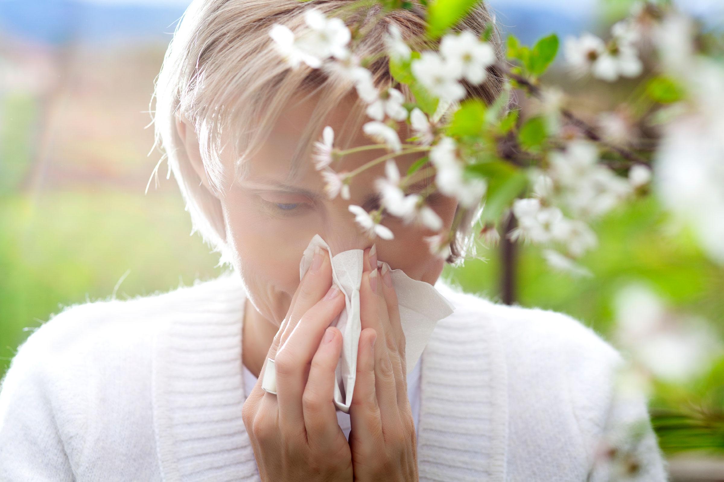 Elderflower-tea-to-treat-red-eyes-caused-by-allergies