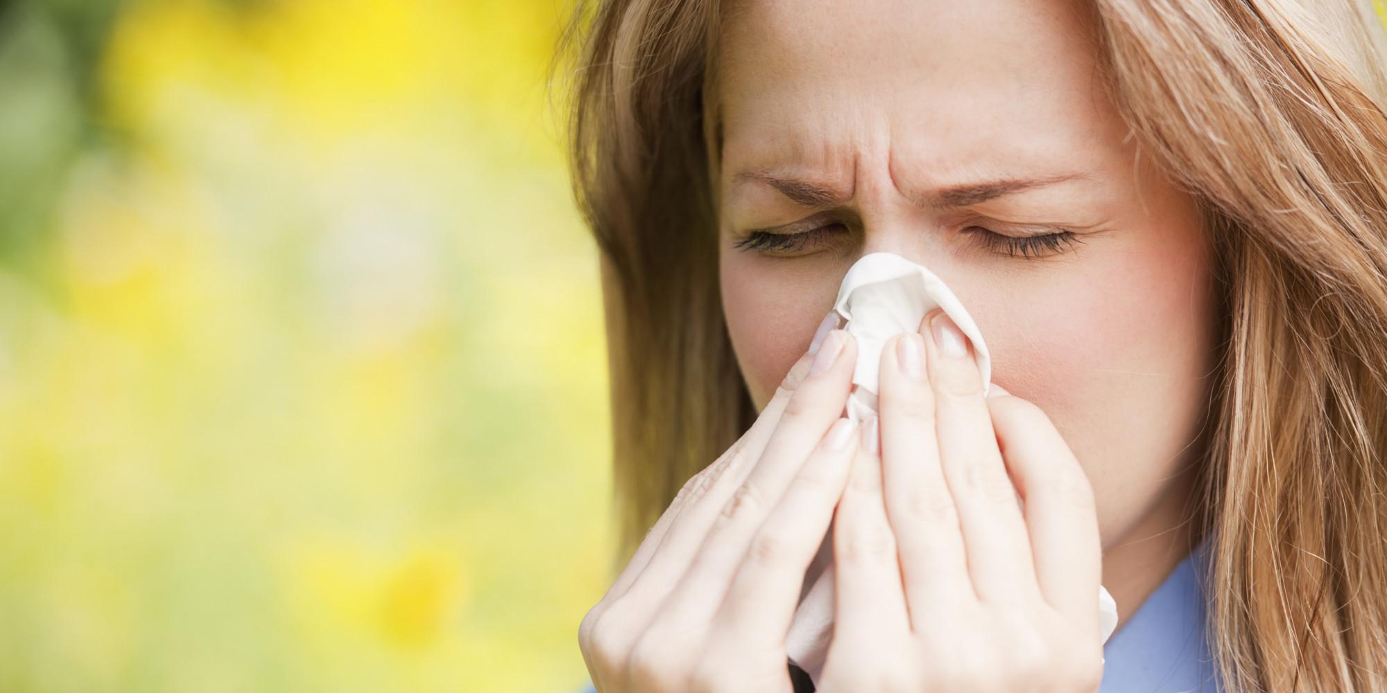 Elderflower-to-mitigate-allergies