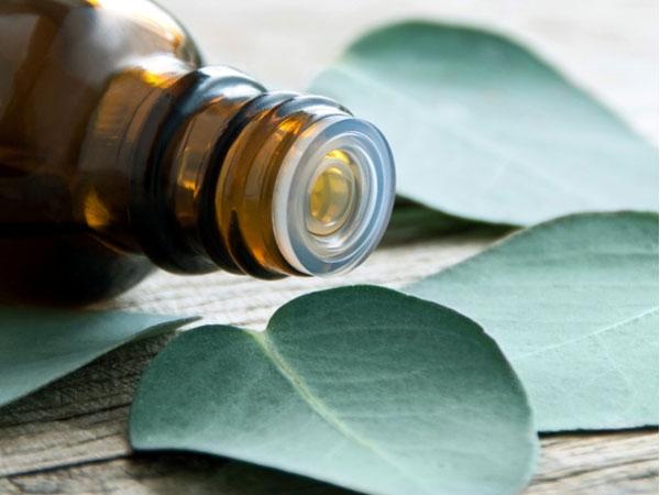 Essential-oils-for-a-cough-Eucalyptus-oil