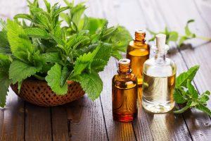 Health-Benefits-of-Patchouli-Oil
