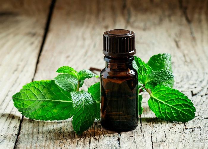 Peppermint-oil-as-essential-oils-for-headaches