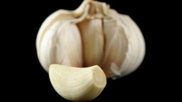 what-is-a-garlic-clove