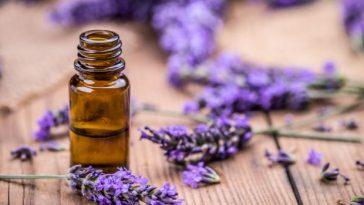 benefits-of-lavender-oil
